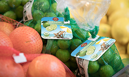 KL_Produce_Options4